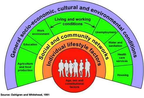 Individual lifestyle factors